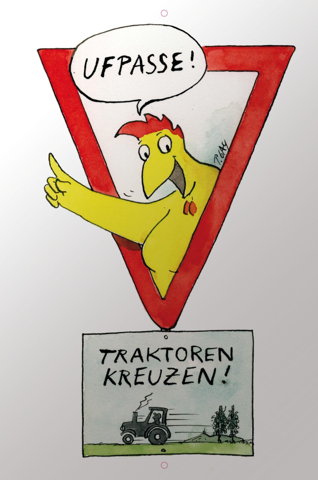 "Gaymann Kollektion Schild ""Ufpasse!"" 40×60 cm"