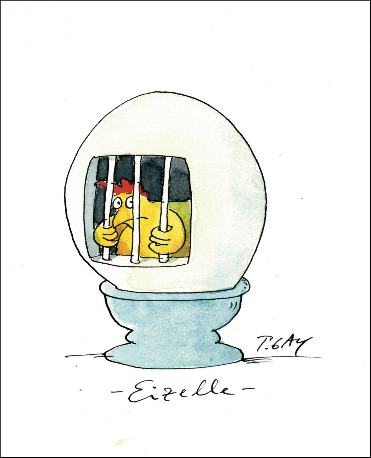 "Gaymann Kollektion Poster ""Eizelle"", 40x50cm"